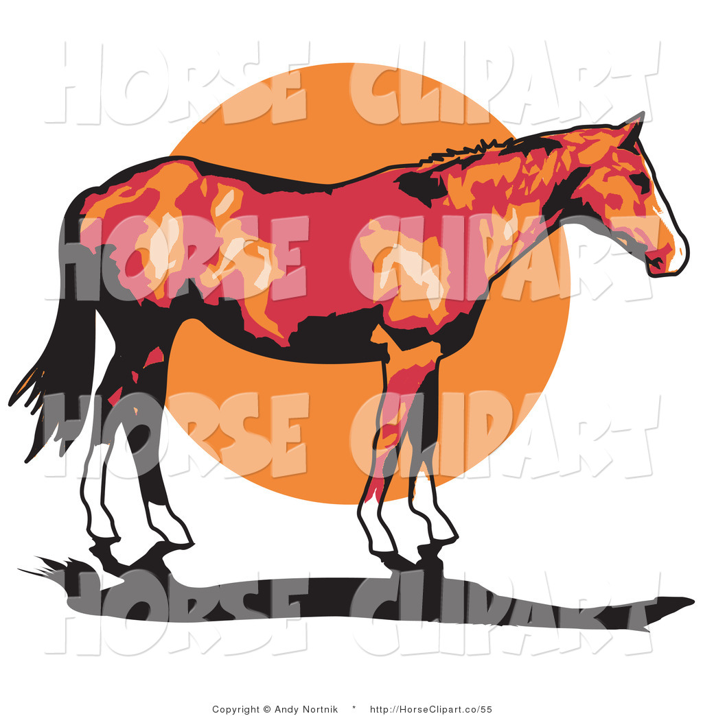 Brown Horse With White Feet And Black Tail Standing Against Sunset