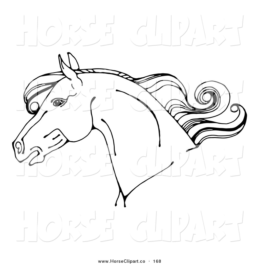Clip Art of a Coloring Page of a Horse Head in Profile, with a ...