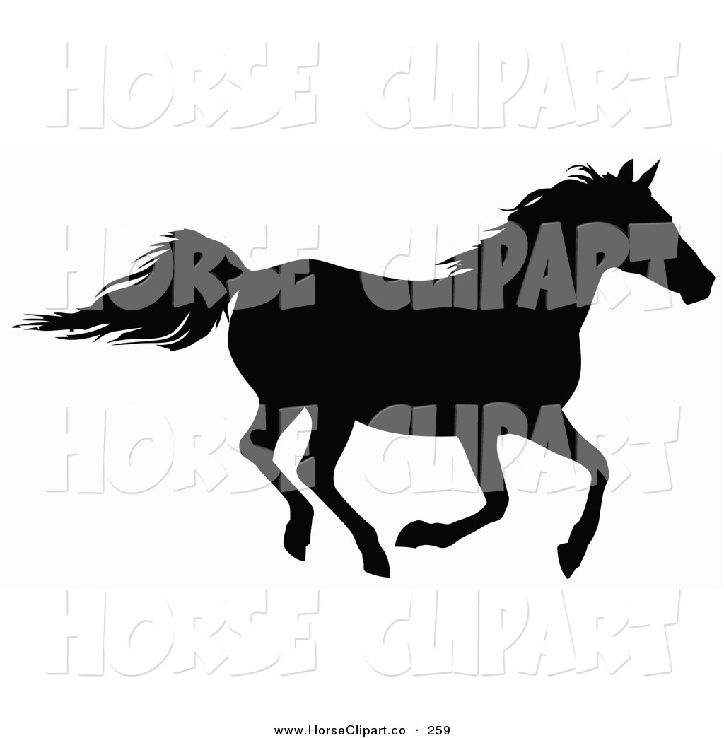 Black horse galloping with rider