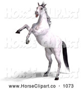 Clip Art of a 3d Spooked White Horse Rearing by Ralf61