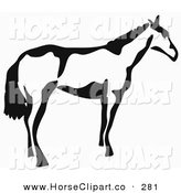 Clip Art of a Black and White Paintbrush Stroke Styled Horse Looking to the Side by Prawny