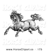 Clip Art of a Black and White Pen and Ink Drawing of a Muscular and Strong Victorian Horse Running to the Left by C Charley-Franzwa