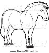 Clip Art of a Black and White Strong Horse by Lal Perera