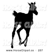 Clip Art of a Black Silhouette of a Running Foal on White by Dero