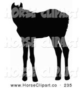 Clip Art of a Black Silhouette of a Standing Foal on White by Dero