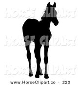 Clip Art of a Black Silhouetted Foal Standing and Looking Right by Dero
