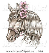 Clip Art of a Brown Bridled Horse Wearing Pink Hibiscus Flowers in Its Mane on White by LoopyLand