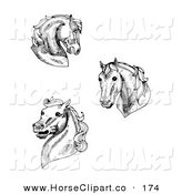 Clip Art of a Collection of Three Black and White Horse Heads by C Charley-Franzwa