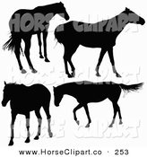 Clip Art of a Four Silhouetted Horses Standing and Walking on White by Dero