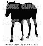 Clip Art of a Grown Horse Silhouetted in Black over White by Dero