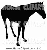 Clip Art of a Horse Silhouetted in Black and Standing While Looking Right by Dero