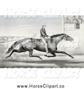 Clip Art of a Horseback Man Racing past Judges in Buffalo, New York, August 1st 1868 by JVPD