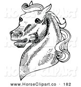 Clip Art of a Muscular Horse's Head with a Curly Mane, Facing Left and Neighing by C Charley-Franzwa