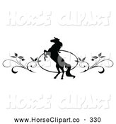Clip Art of a Pretty Black and White Rearing Horse and Vine Website Header or Page Divider by C Charley-Franzwa