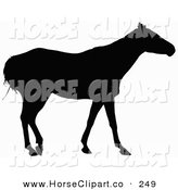 Clip Art of a Side View of a Horse Silhouetted in Black and Looking to the Right by Dero