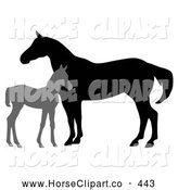 Clip Art of a Silhouetted Gray Foal by a Mare on White by C Charley-Franzwa