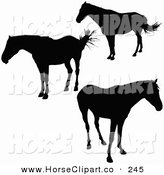 Clip Art of a Trio of Black Standing Silhouetted Horses by Dero