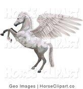 Clip Art of a White Winged Horse, Pegasus, Rearing up on Its Hind Legs on White by AtStockIllustration