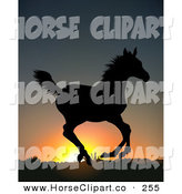 Clip Art of a Wild Running Horse, Silhouetted in Black Against an Orange Sunrise or Sunset by Dero