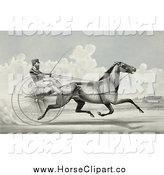 Clip Art of C. Champlin Driving the Trotting Horse, George Palmer by JVPD
