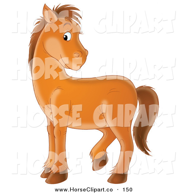 Clip Art of a Bashful Brown Pony Looking over Its Back and Glancing at the Viewer