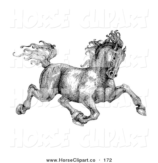 Clip Art of a Black and White Pen and Ink Drawing of a Muscular Victorian Horse Trotting off to the Right