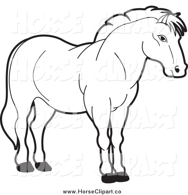 Clip Art of a Black and White Strong Horse