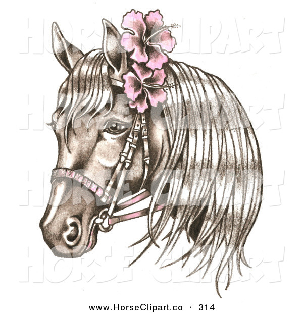 Clip Art of a Brown Bridled Horse Wearing Pink Hibiscus Flowers in Its Mane on White