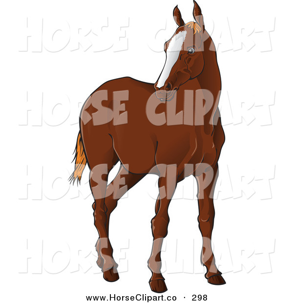 Clip Art of a Brown Horse Standing and Looking Left on White