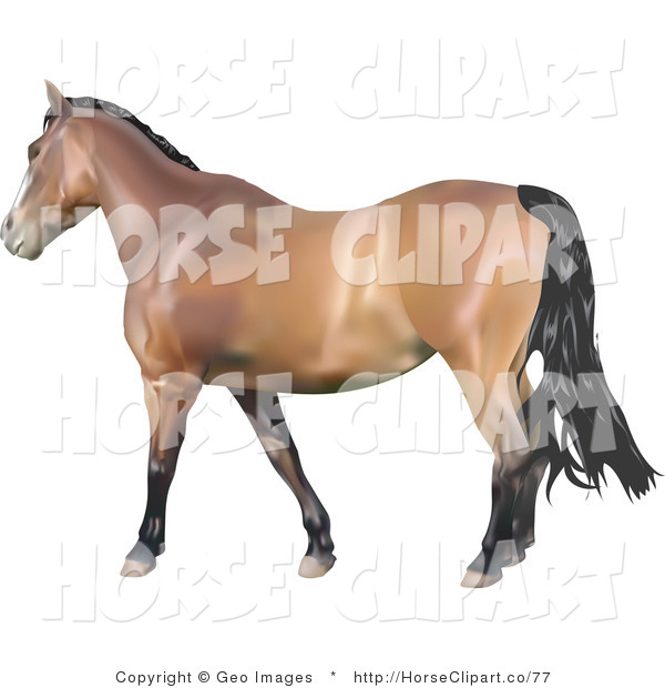Clip Art of a Brown Horse with a Black Mane and Tail Facing Left