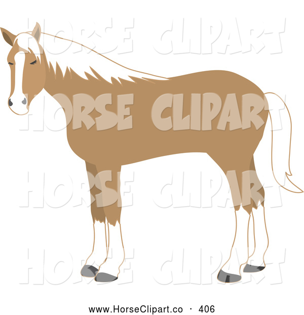 Clip Art of a Cute Standing Tan and White Horse