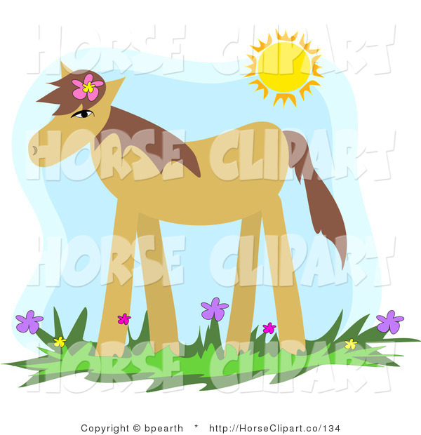 Clip Art of a Cute Tan Pony Wearing a Flower in Its Mane, Standing in a Spring Flower Field Under the Sunshine
