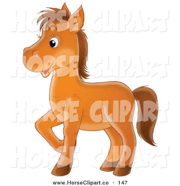 Clip Art of a Happy Brown Horse Prancing to the Left on White