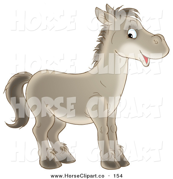 Clip Art of a Happy Gray Horse Looking to the Right and Glancing at the Viewer