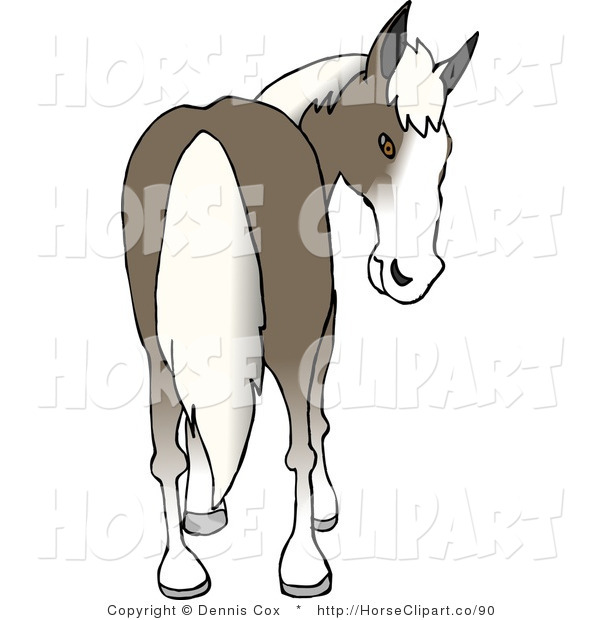 Clip Art of a Horse Looking Back