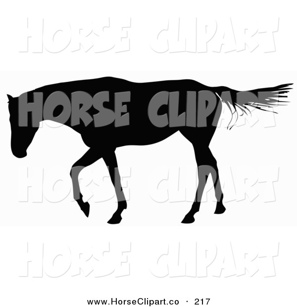 Clip Art of a Horse Walking to the Left and Silhouetted in Black over White