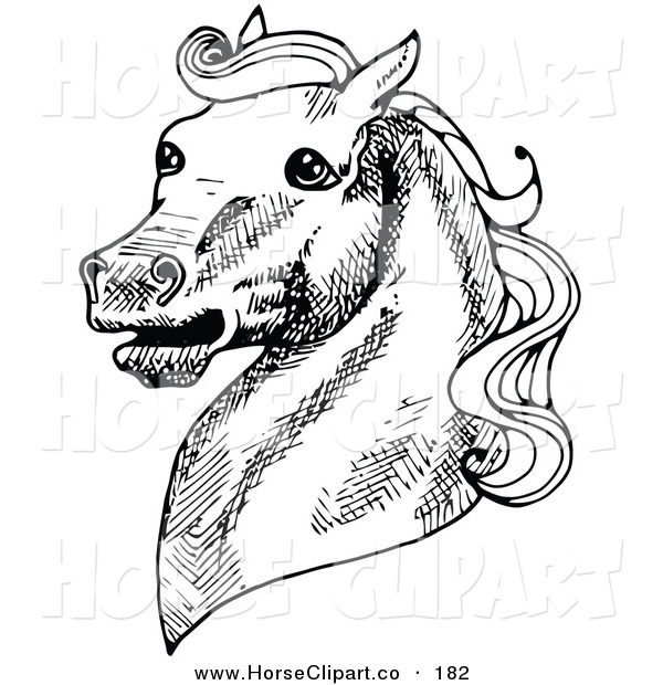 Clip Art of a Muscular Horse's Head with a Curly Mane, Facing Left and Neighing