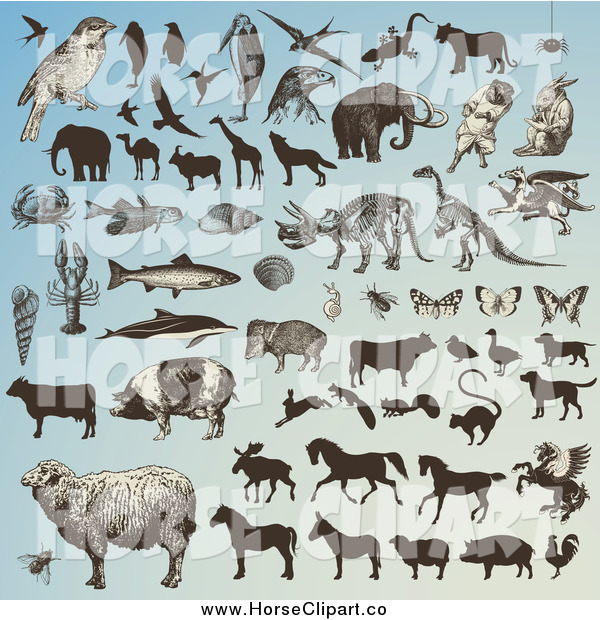 Clip Art of Animals and Horse Silhouettes on Blue
