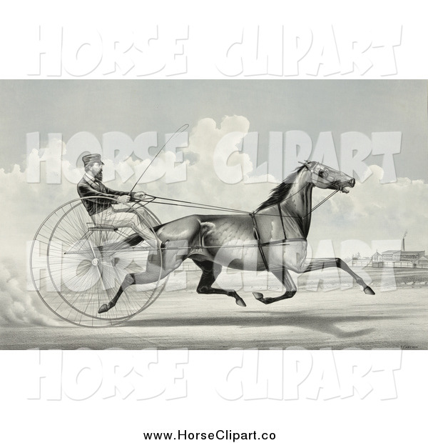 Clip Art of C. Champlin Driving the Trotting Horse, George Palmer