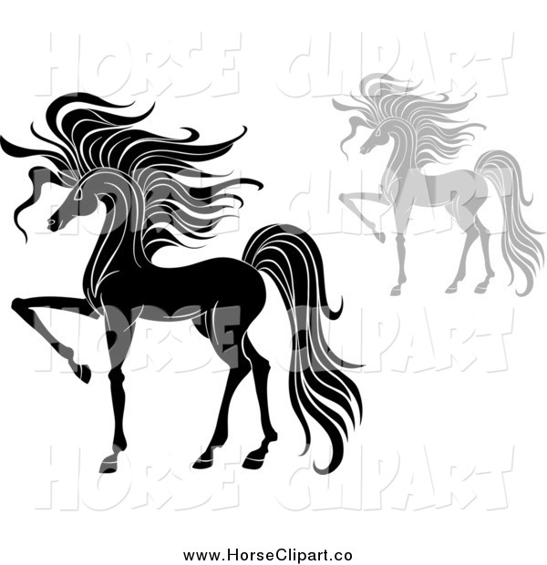 Clip Art of Elegant Black and White and Gray Prancing Horses