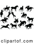 Clip Art of a Digital Collage of Horse Silhouettes, on White by