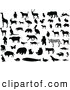 Clip Art of a Digital Set of Silhouetted and Black and White Animals by