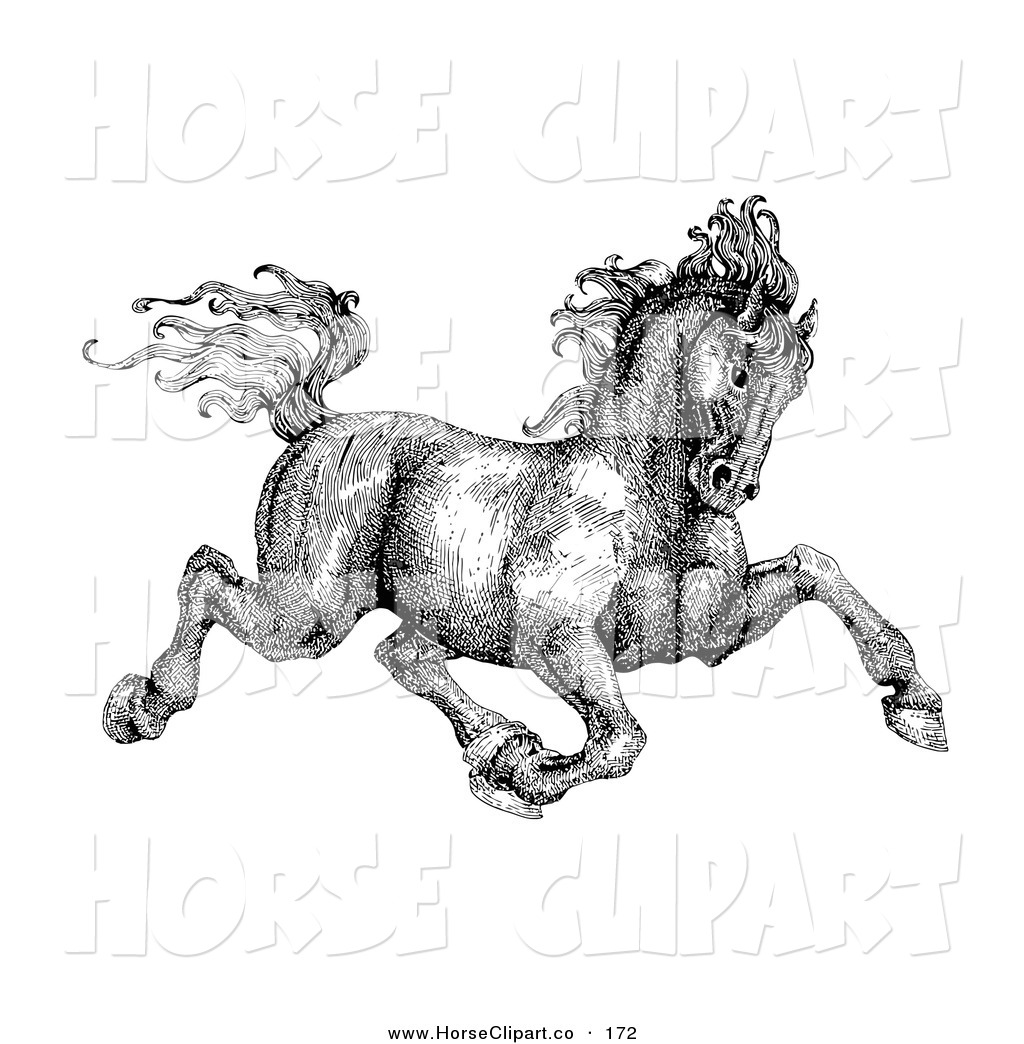 Royalty Free Rubber Stamp Design Stock Horse Designs