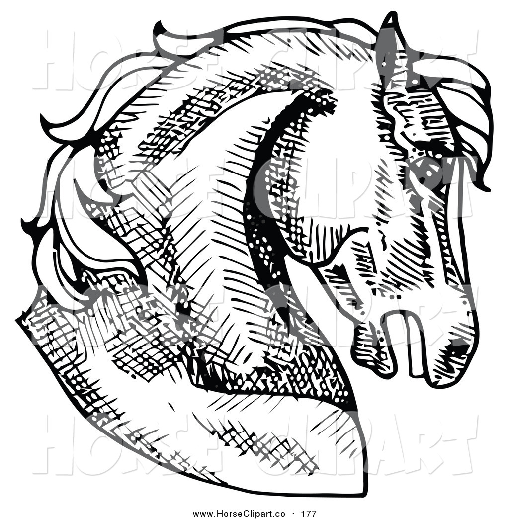 Royalty Free Rubber Stamp Design Stock Horse Clipart Illustrations